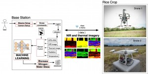 AI-driven drone system for smart crop monitoring