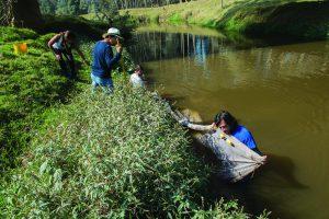 Maldonado guía a sus estudiantes, casi 'con el agua al cuello', para encontrar la guapucha, el pez plateado que finalmente muestra una de sus estudiantes.
