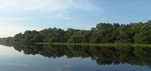 ¿Cómo van los parques nacionales naturales de Colombia?