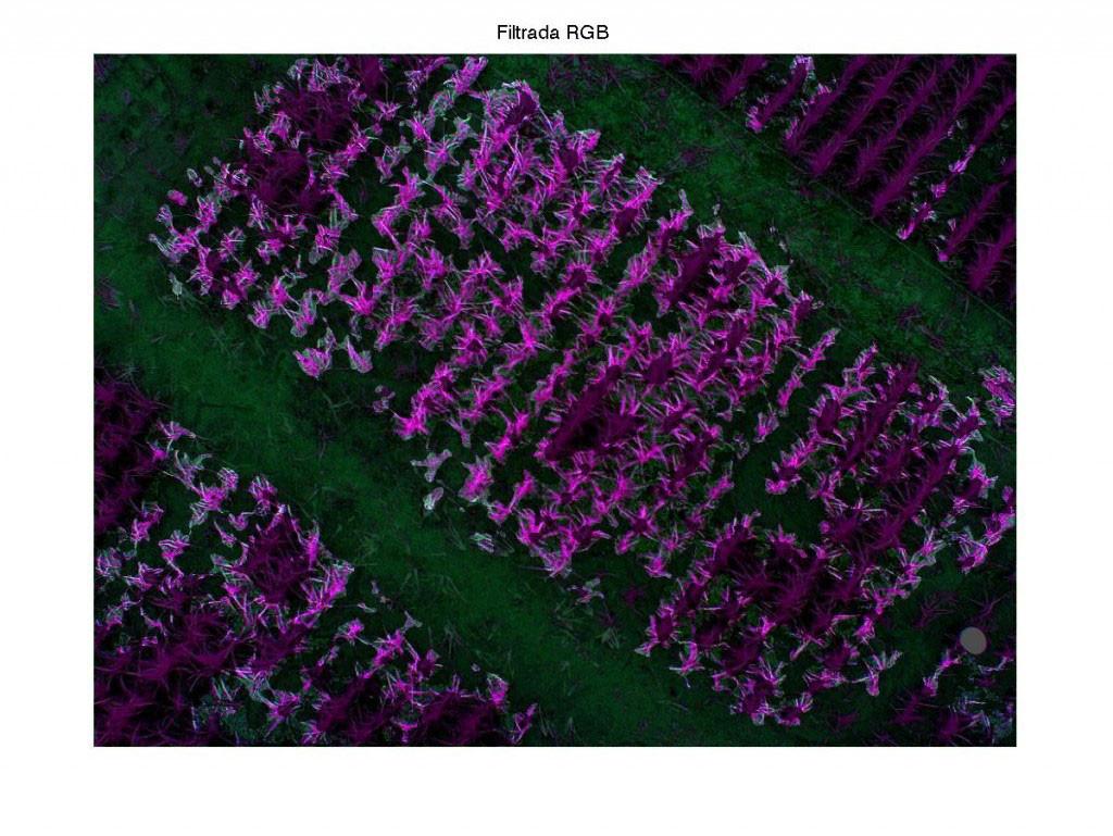 Imagen captada por el dron durante la fase de pruebas.
