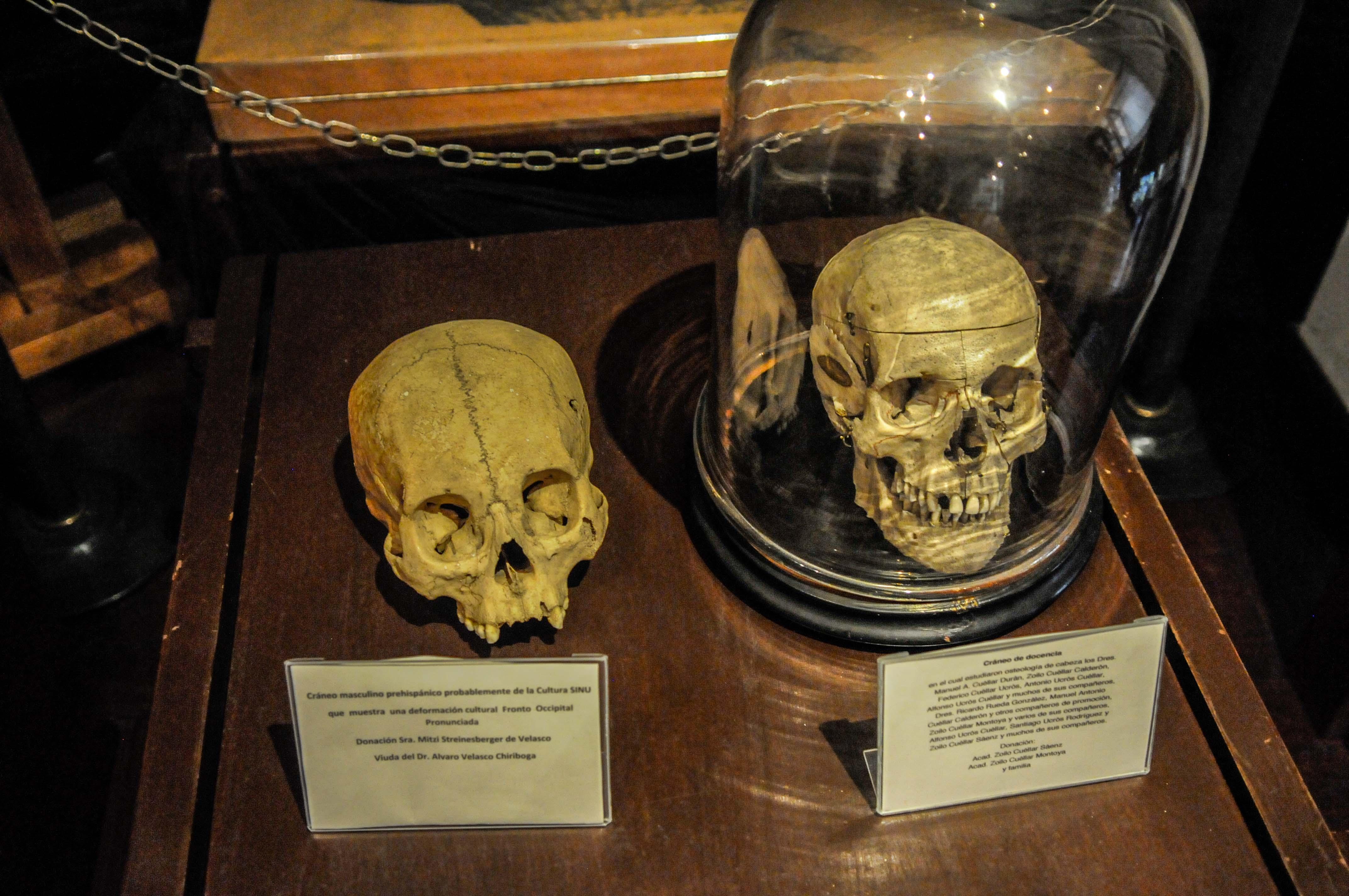 Historias de medicina en la Colonia