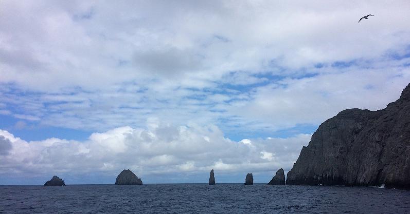 El trabajo de diversos investigadores contribuyó para que el área protegida en las aguas del Pacífico colombiano se ampliara sobrepasara los 27.000 kilómetros cuadrados. / Cortesía, Camila González