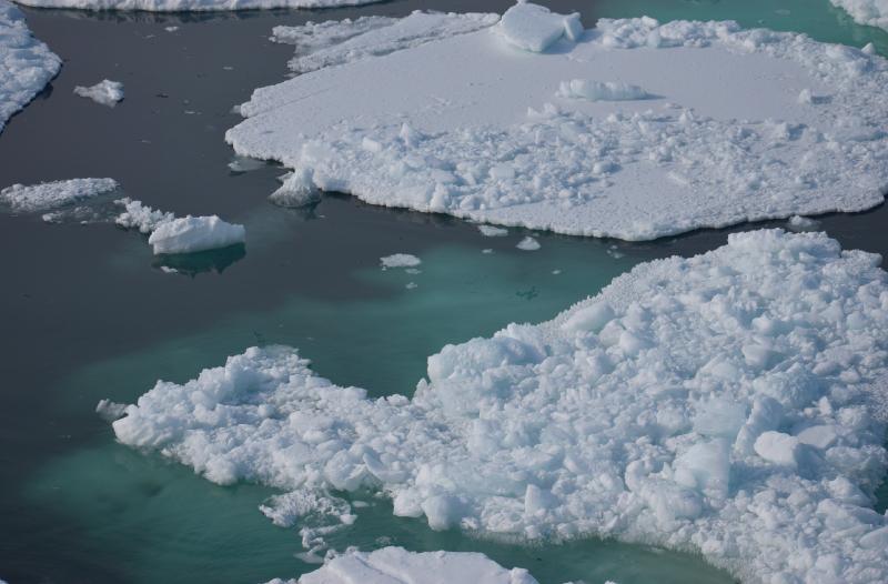 Glaciar Drigalsky