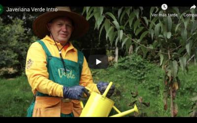 #JaverianaVerde, un camino hacia la sostenibilidad