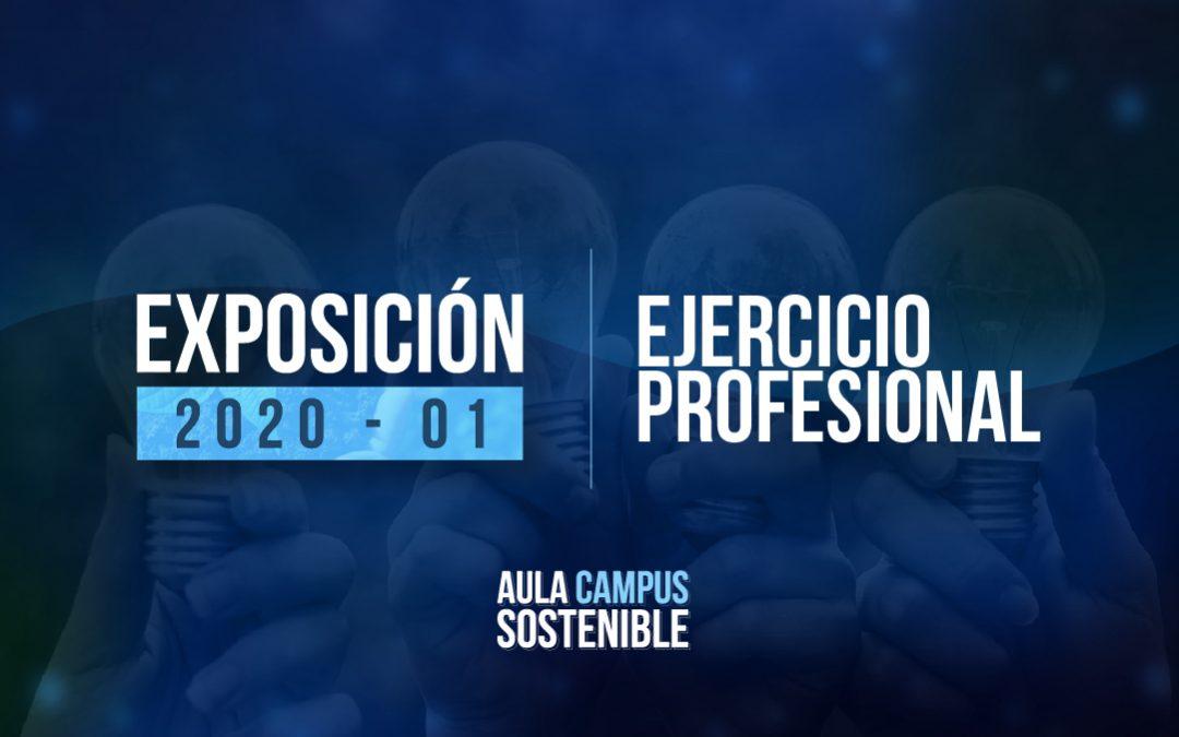 Ejercicio Profesional |Exposición 2020 – 01