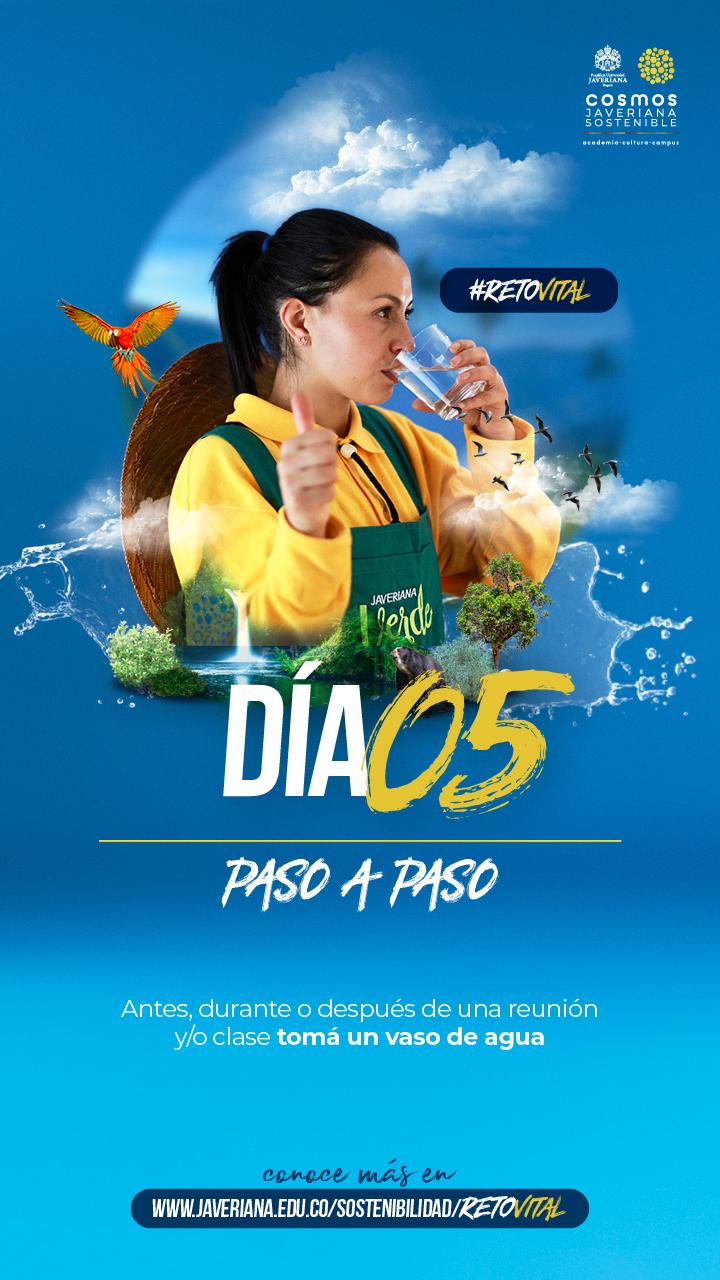 Campaña_DÍA 05