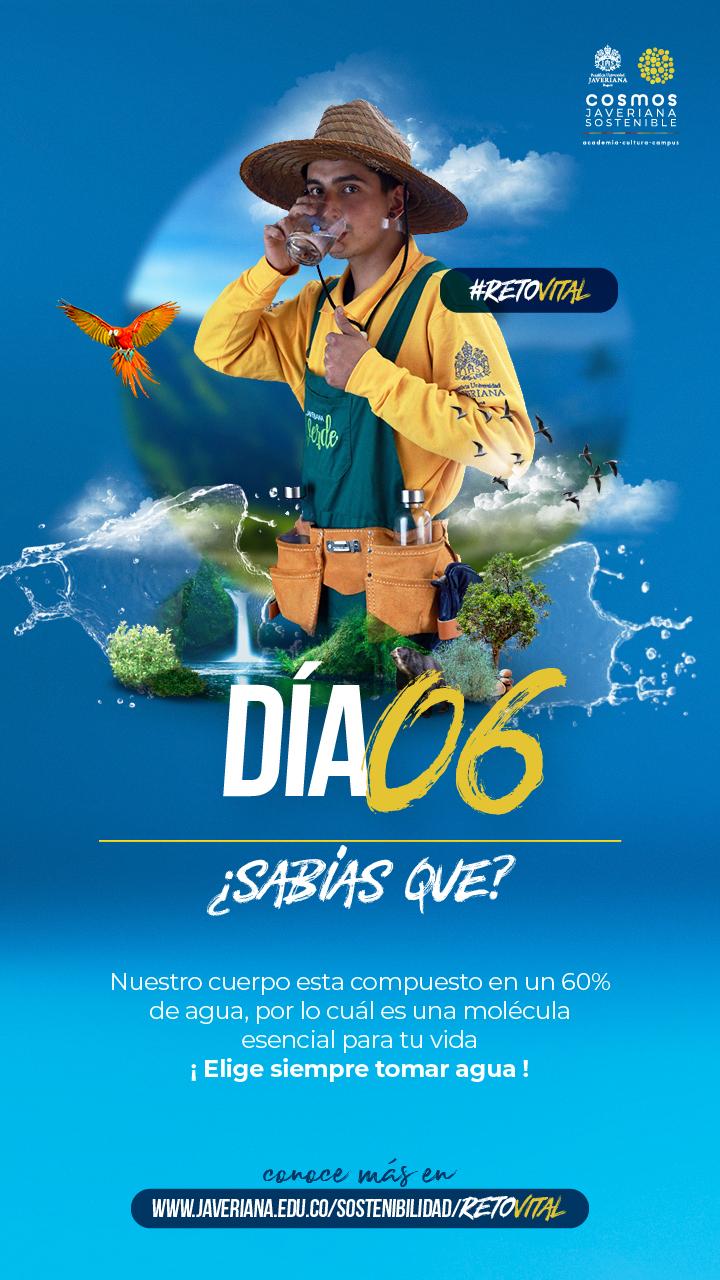 Campaña_DÍA 06