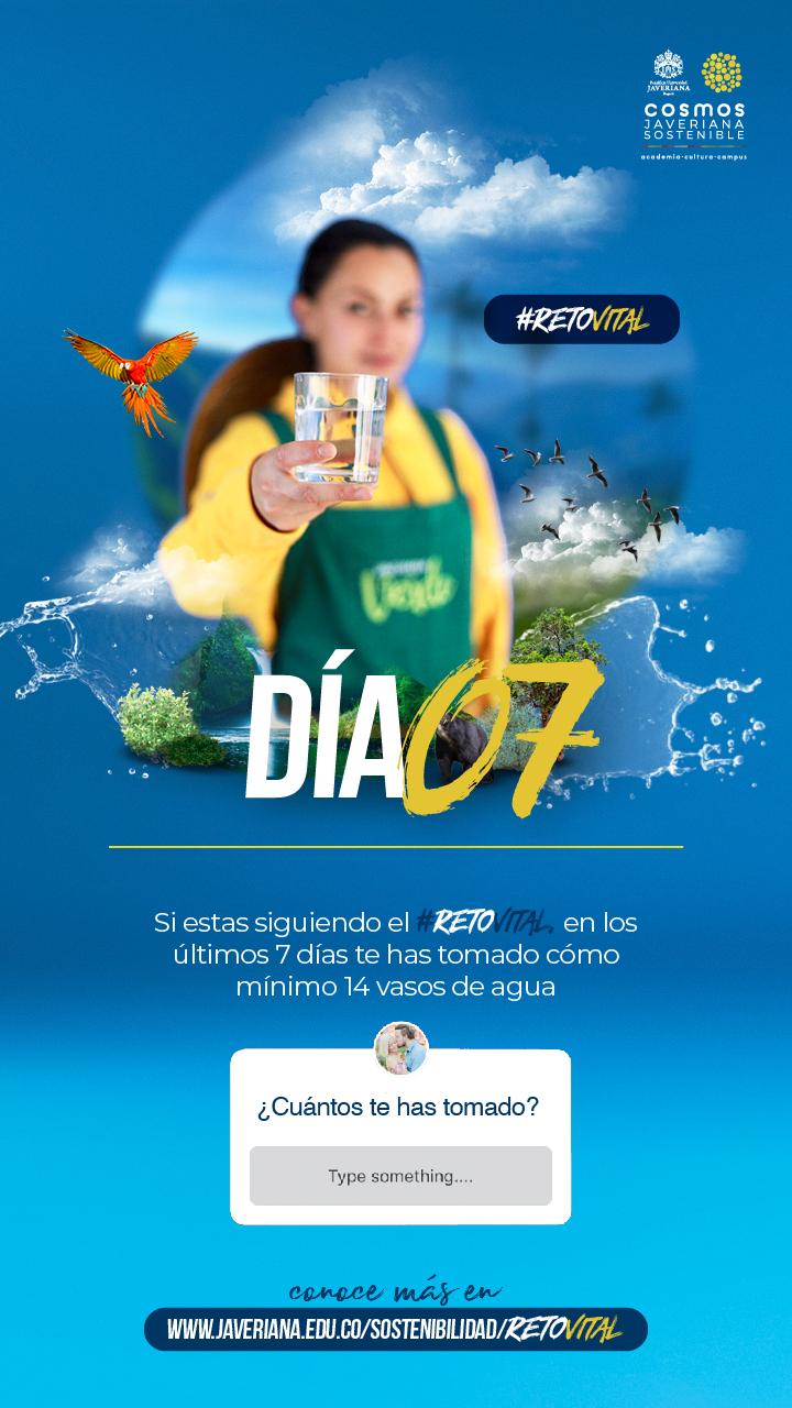 Campaña_DÍA 07