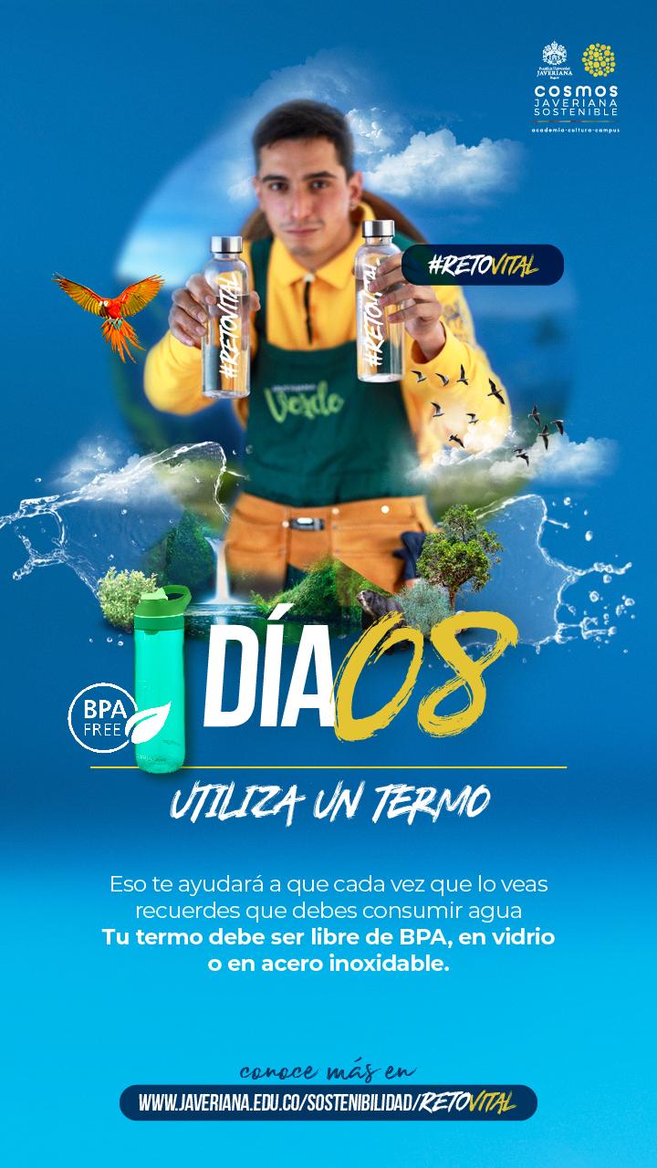 Campaña_DÍA 08