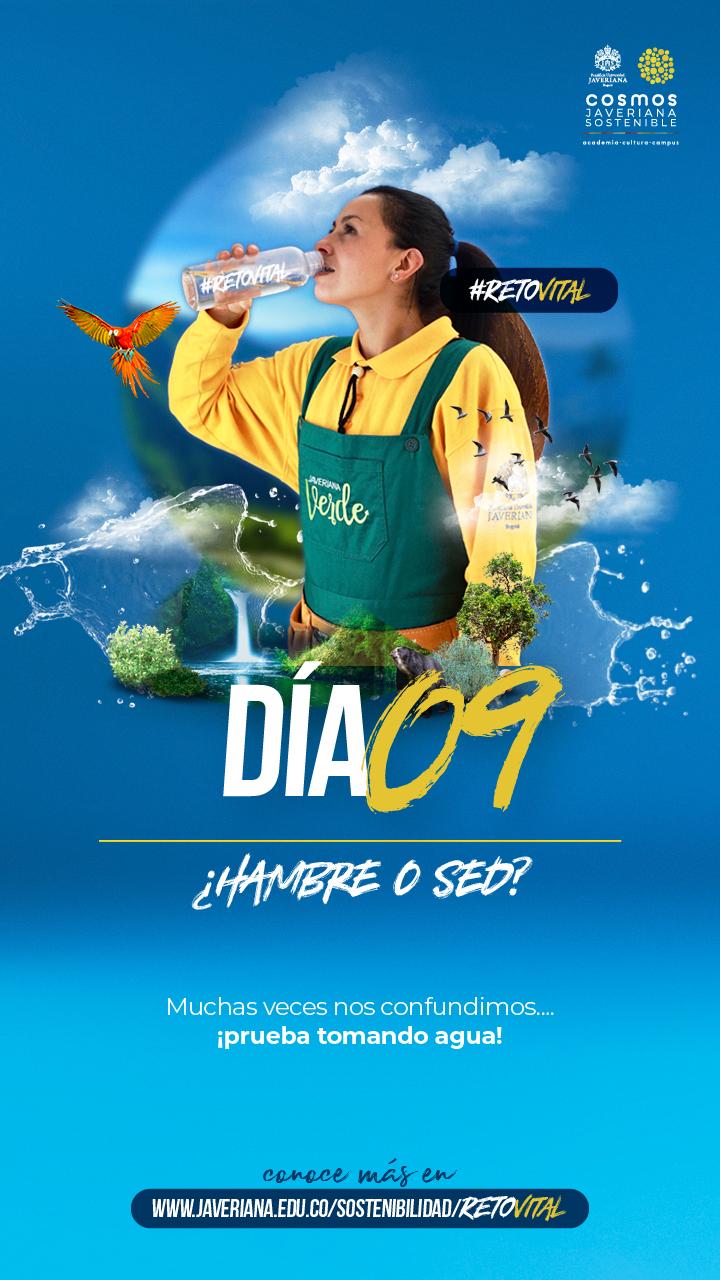 Campaña_DÍA 09