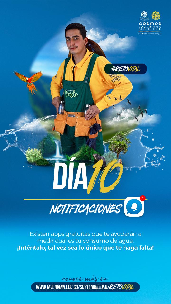 Campaña_DÍA 10