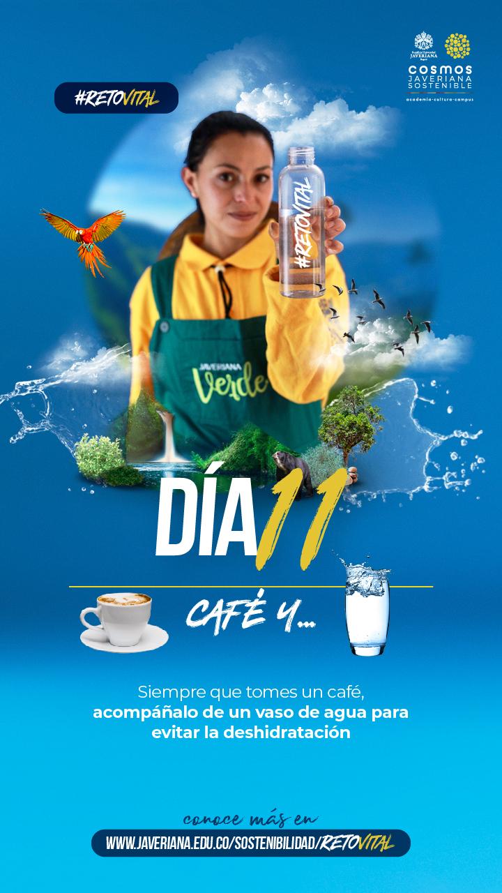 Campaña_DÍA 11