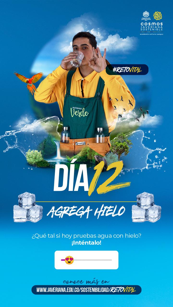 Campaña_DÍA 12