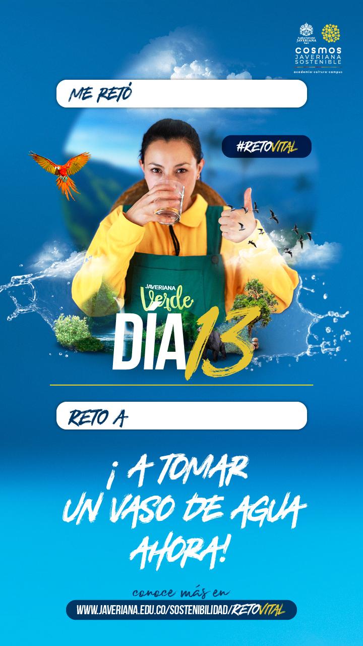 Campaña_DÍA 13