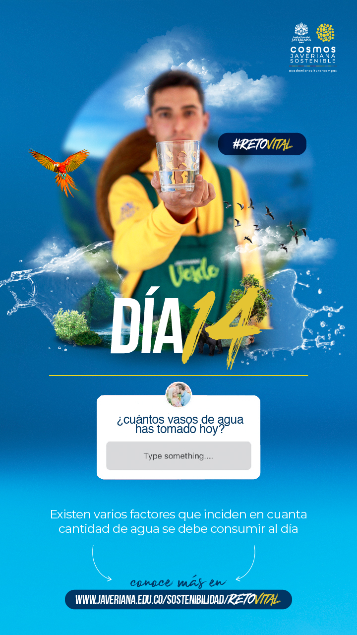 Campaña_DÍA 14
