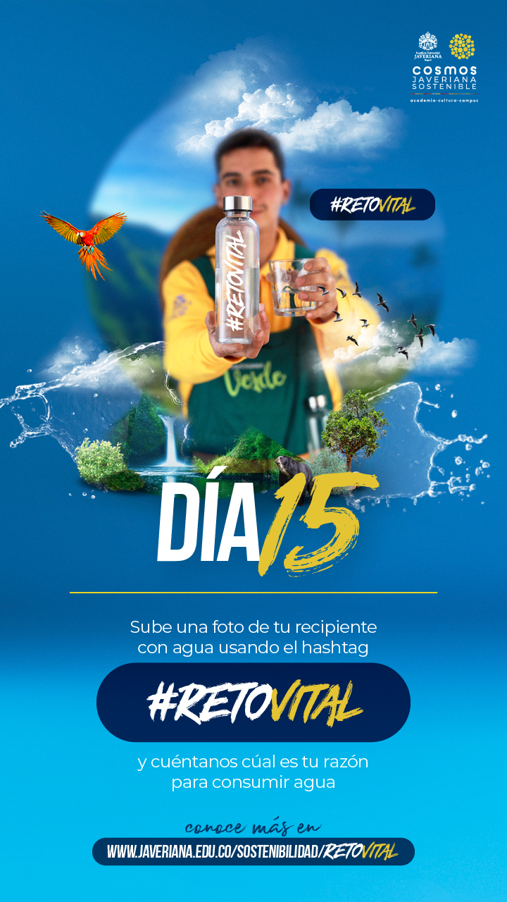 Campaña_DÍA 15