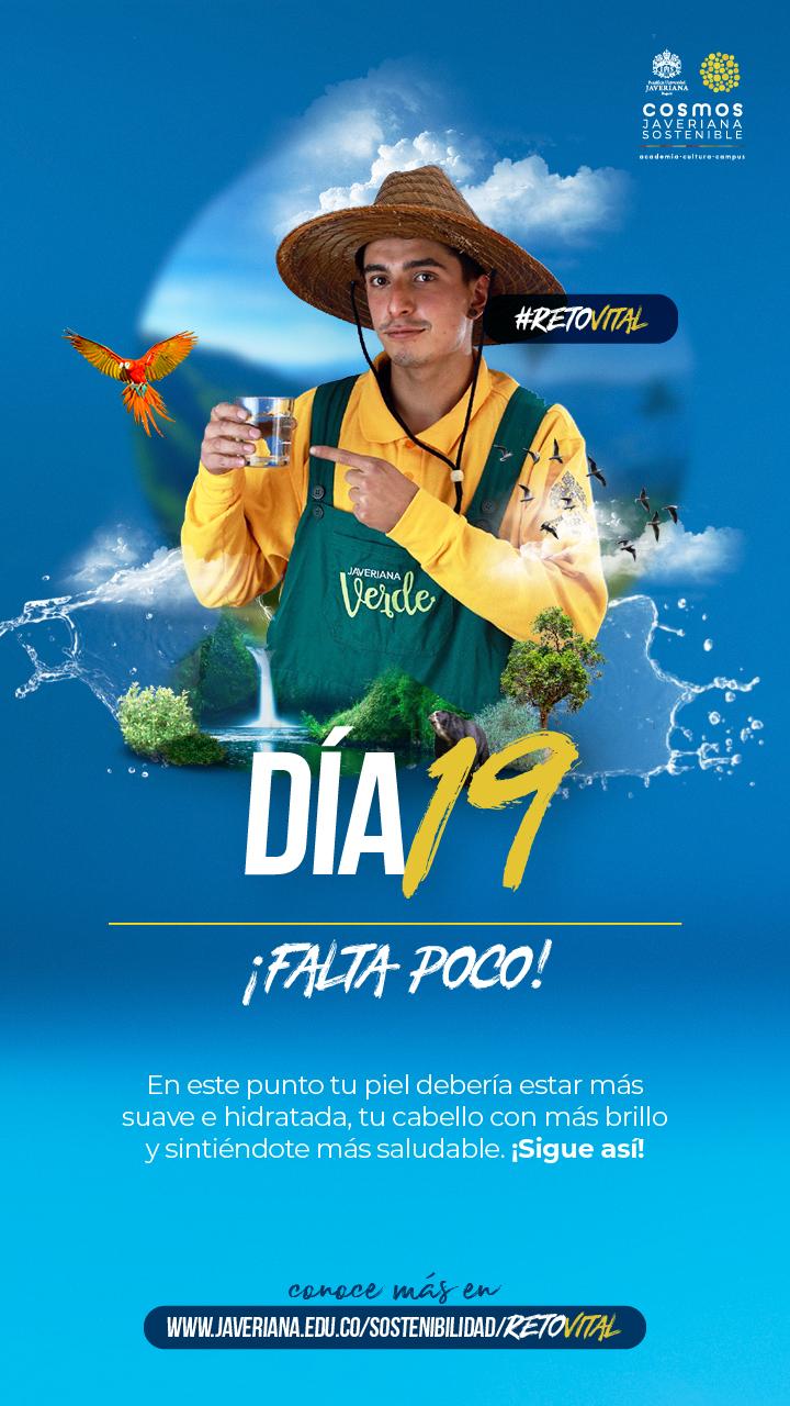 Campaña_DÍA 19