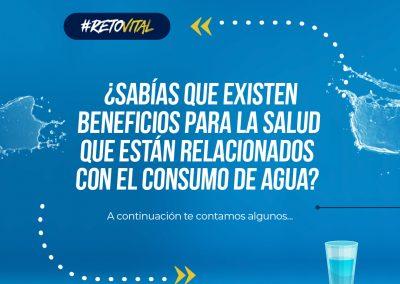 Campaña_FEED 02-28