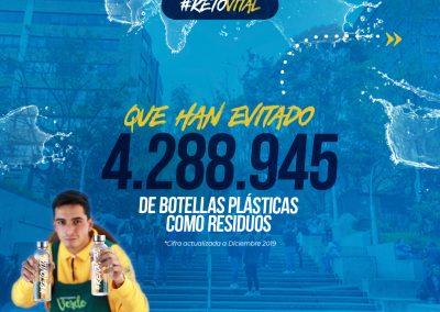 Campaña_FEED 03-37