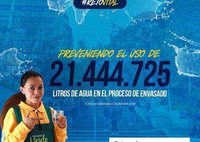 Campaña_FEED 03-38