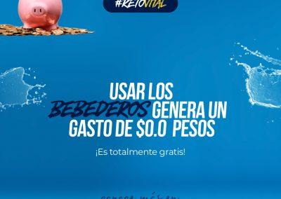 Campaña_FEED 05