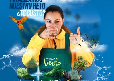 Campaña_FEED 07