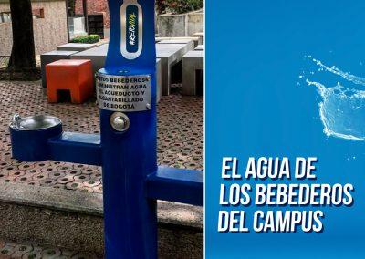 Campaña_FEED 09-47