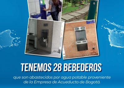 Campaña_FEED 09-48